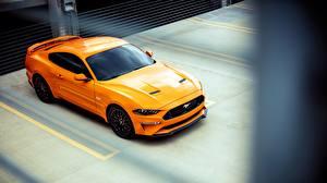 Фотографии Форд Желтый Fastback Sports 2018 Mustang GT