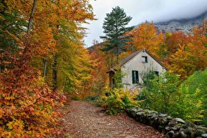 Фото Франция Дома Дороги Осенние Камни Листва Деревья Corsica Природа