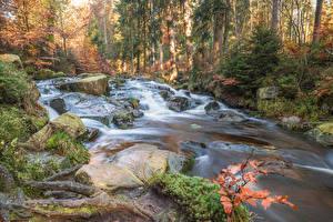 Картинка Германия Осень Леса Камни Ручей Selkefall