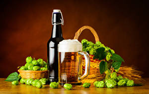 Фотография Хмель Пиво Корзинка Бутылка Кружка Пена Еда