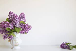 Обои Сирень Ваза Цветы картинки