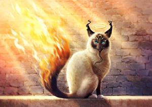 Обои Волшебные животные Коты Огонь Хвост Фантастика