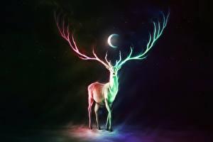 Обои Волшебные животные Олени Полумесяц Рога Ночь Фантастика