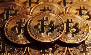 Фото Деньги Монеты Crypto-currency, Bitcoin