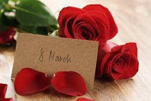 Картинка Розы Международный женский день Английский Цветы