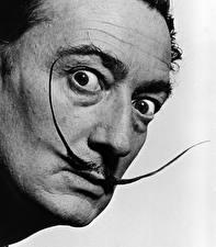 Фотографии Salvador Dali Вблизи Мужчины Лицо Черно белое Взгляд Усы человека