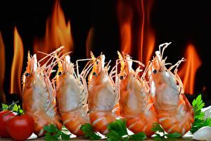 Фото Морепродукты Креветки Пламя Животные