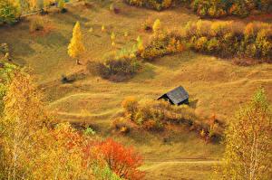 Фото Сезон года Осенние Сверху Природа