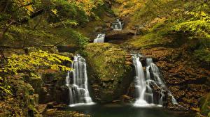 Фотография Сезон года Осень Водопады Листья Мох Природа