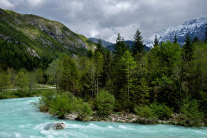 Фотография Словения Горы Речка Леса Bovec Природа