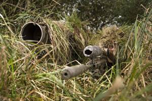 Фотография Снайперы Оптический прицел Камуфляж Трава