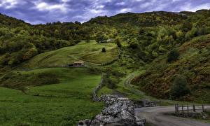 Картинки Испания Леса Луга Осенние Холмы Leon