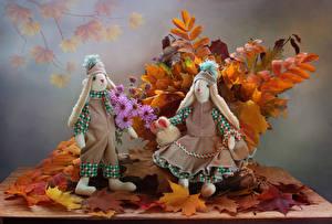 Фотография Натюрморт Осень Листва Кукла Двое Шапки Природа