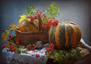 Картинки Натюрморт Тыква Рябина Корзинка Пища