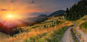 Картинки Рассветы и закаты Дороги Горы Пейзаж Трава Ель Лучи света Природа