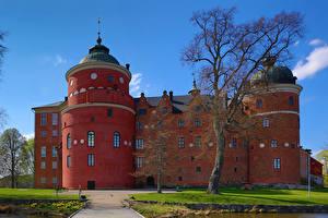 Картинки Швеция Замки Деревья Gripsholm Castle