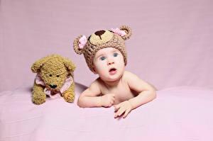 Фотография Плюшевый мишка Цветной фон Младенцы Шапки Смотрит Дети