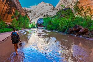 Фото Штаты Гранд-Каньон парк Парки Горы Камень Ручей Девушки