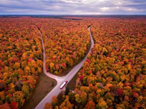 Обои США Пейзаж Осенние Леса Дороги Michigan Природа