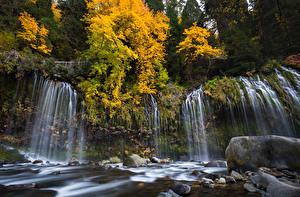 Фотография США Водопады Осенние Леса Камни Калифорния Mossbrae Falls Sacramento River Природа