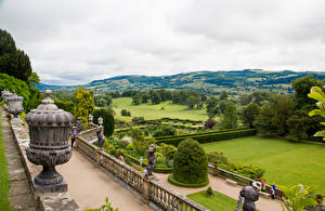 Картинки Великобритания Парки Газон Кусты Powis Castle Gardens Природа