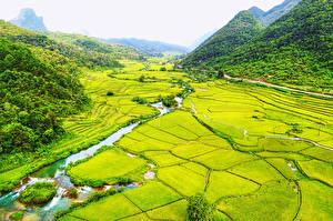 Фото Вьетнам Пейзаж Поля Речка Горы Леса Bac Can Природа
