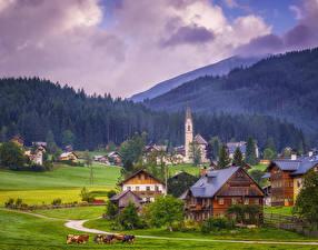 Фотографии Австрия Горы Здания Леса Луга Gosau Города