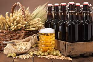 Фотография Пиво Хмель Бутылка Корзинка Колос Зерна Кружка Пена Пища