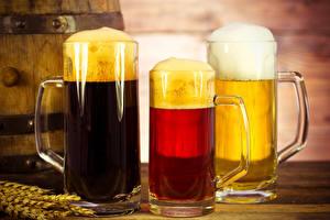 Обои Пиво Трое 3 Кружка Пене Продукты питания