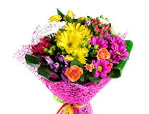 Фото Букеты Роза Хризантемы Белом фоне цветок