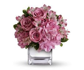 Фотографии Букеты Розы Гортензия Альстрёмерия Белый фон Ваза Розовый Цветы