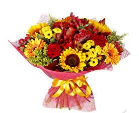 Обои Букет Розы Подсолнечник Герберы Хризантемы Белым фоном Бантики цветок