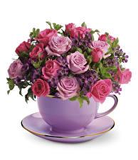 Фотография Букеты Розы Белый фон Чашка Блюдце Цветы