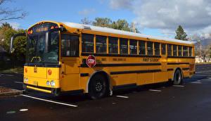 Обои Автобус Желтый Авто