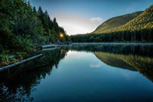 Обои Канада Озеро Леса Vancouver Island National Parks Природа картинки