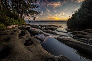 Фотографии Канада Парки Побережье Рассветы и закаты Vancouver Island National Parks Природа