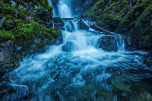 Картинка Канада Водопады Парки Мох Vancouver Island National Parks