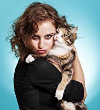 Картинки Коты Цветной фон Шатенка Смотрит Девушки