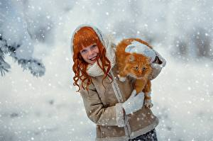 Обои Кошки Рыжая Снежинки Рыжий Улыбка Julia Voinich Девушки