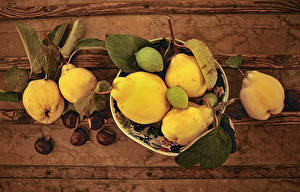 Фотографии Каштан Груши Листва Cidonia oblonga Пища