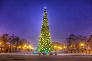 Фото Новый год Праздники Россия Зимние Новогодняя ёлка Ночные Гирлянда Природа