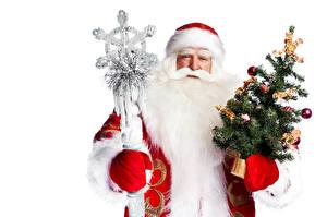 Фото Рождество Белый фон Санта-Клаус Елка Борода Посохи