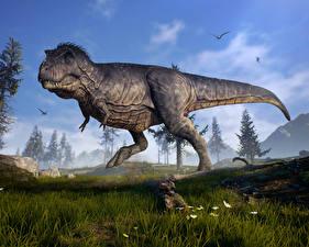 Обои Динозавры Крупным планом Тираннозавр рекс Трава 3D Графика Животные