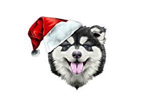 Картинки Собаки Рождество Шапки Белый фон Голова Язык (анатомия) Животные