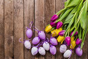 Фотография Пасха Тюльпаны Яйца Доски Цветы