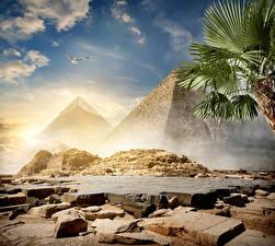Картинки Египет Пустыни Камни Небо Пирамиды Cairo Природа