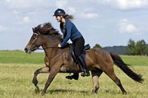 Фотографии Конный спорт Лошади Шлем спортивный Девушки