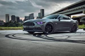 Картинки Ford Серый Mustang