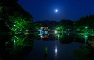 Картинка Япония Парки Пруд Мосты Пагоды Деревья Ночные Луна Nara Park