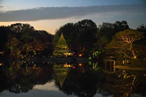 Картинки Япония Токио Парки Пруд Вечер Деревья Природа